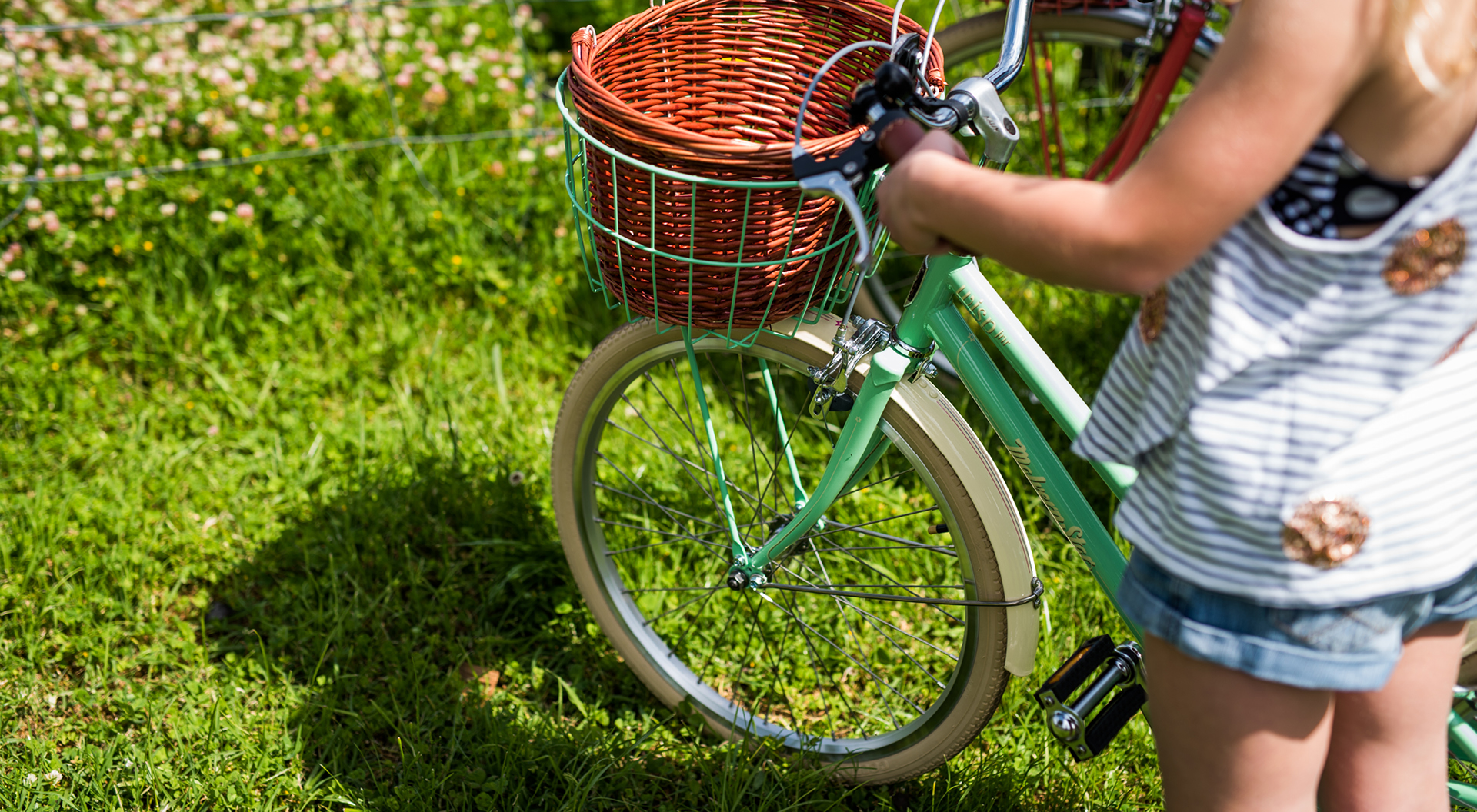 Lifestyle Bikes for Kids and Adults