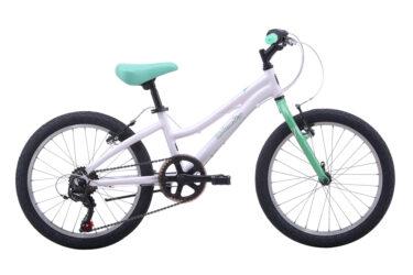 Livewire 20 Kids Bike